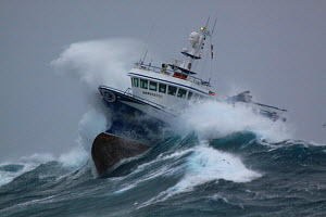 "Fishing vessel ""Harvester"" powering through huge waves while operating in the North Sea. Europe, January 2009. Property released.  -  Philip Stephen"