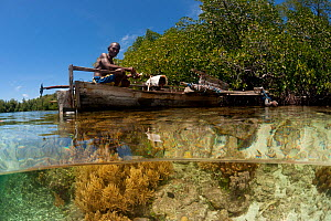 Split-level shot of a shallow coral reef and mangroves with local West Papuan man in a dugout canoe. North Raja Ampat, West Papua, Indonesia, February 2010 - Jurgen Freund