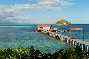 View of the jetty from Sorido Bay Resort dining room area. Raja Ampat, West Papua, Indonesia, February 2010.  -  Jurgen Freund