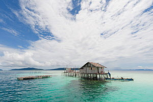 West Papuan house on stilts in coral reef shallows. Raja Ampat, West Papua, Indonesia, February 2010.  -  Juergen Freund