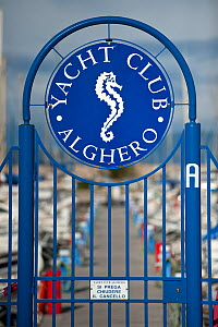 A seahorse symbol is used as the logo for a yacht club in Alghero, Sardinia, Italy, March. Seahorses typically favour the same sheltered bays that make excellent natural anchorages, which has led to c... - Alex Mustard