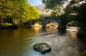 Fingle Bridge, a historic stone bridge possibly dating from the seventeenth century, in the early morning light. Near Drewsteignton, Dartmoor National Park, Devon, UK, September 2010 - Ross Hoddinott