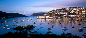 View of Salcombe and harbour from Snape�s Point in the early morning light. Salcombe, South Devon, UK, September 2010  -  Ross Hoddinott
