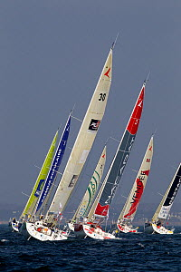 Fleet racing on day one of the Transat Benodet-Martinique. Brittany, France, April, 2011.  -  Benoit Stichelbaut