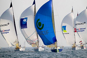 Fleet departing Benodet under spinnaker on day one of the Transat Benodet-Martinique. Brittany, France, April 2011.  -  Benoit Stichelbaut