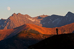 Slovak conservationist Erik Balaz silhouetted against Mt. Krivan and the High Tatras. Slovakia, September 2007. - Bruno D'Amicis
