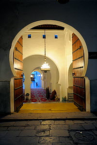 Keyhole doorway to Mosque Kairaouine, Africa's largest and oldest university. Fes, Morocco, December 2010.  -  Fabio Liverani