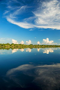 Clouds reflected in the Rio Negro. The Amazon basin, Brazil.  -  Kevin Schafer
