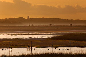 Cley nature reserve on an Autumn evening with silhouette of visitors walking along dyke and waders and ducks on water, Norfolk, UK, November - Ernie Janes