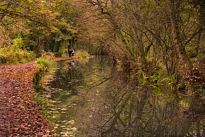 People walking along towpath beside the Cromford Canal, Derbyshire, UK, in autumn  -  Ernie Janes