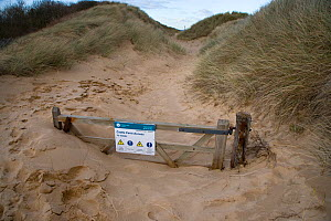 Gate and path buried by drifting sand, Norfolk, UK  -  Ernie Janes