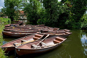 Punts on River Stour at Flatford Mill, Suffolk, UK, scene of many of John Constable's famous landscape paintings - Ernie Janes