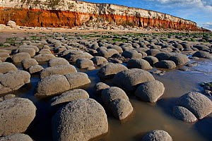 Rocks and cliffs on beach at Hunstanton, North Norfolk, UK, September  -  Ernie Janes