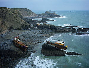Three fishing boats wrecked on the coast in winter storms, Pembrokeshire, UK,  -  Ernie Janes