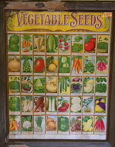 Victorian vegetable seed packets, chart, UK  -  Ernie Janes