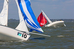 Melges 24s broaching in the wind during a race at Charleston Race Week, South Carolina, USA, April 2011. - Billy Black