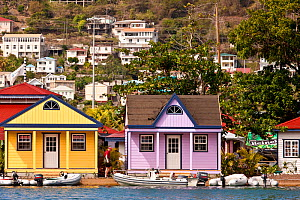 Colourful houses on the waterfront during the Grenada Sailing Festival, Caribbean, January 2010.  -  Onne van der Wal