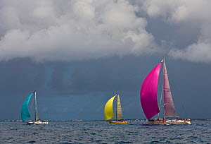 Yachts racing under colourful spinnakers and dark skies during the Heineken Regatta, St Martin, Caribbean, March 2011. - Onne van der Wal
