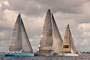 """Aquarius"", ""Aegir Racing Limited"" and ""Storm"" racing beneath grey skies during the Heineken Regatta, St Martin, Caribbean, March 2011. - Onne van der Wal"