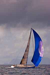 Yacht under spinnaker beneath stormy skies during the Heineken Regatta, St Martin, Caribbean, March 2011. - Onne van der Wal