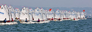 Panoramic view of startline during the Optimist North Americans, Newport, Rhode Island, USA, August 2010. - Onne van der Wal