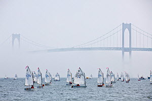 Fleet racing in the mist beneath barely visible bridge during the Optimist North Americans, Newport, Rhode Island, USA, August 2010.  -  Onne van der Wal