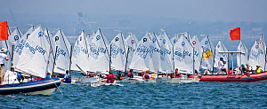 Panoramic view of fleet and officials during the Optimist North Americans, Newport, Rhode Island, USA, August 2010. - Onne van der Wal
