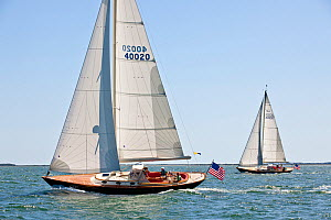 Two yachts racing during a Friendship Yachts rendezvous. Nantucket, Maine, USA, August 2010. All non-editorial uses must be cleared individually.  -  Onne van der Wal