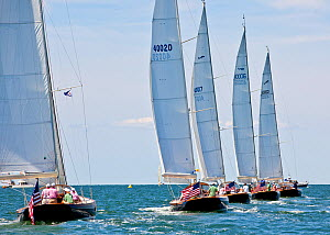 Fleet racing during a Friendship Yachts rendezvous. Nantucket, Maine, USA, August 2010. All non-editorial uses must be cleared individually.  -  Onne van der Wal
