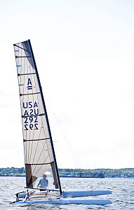 USA C-Class catamaran team in training for Little America's Cup. Newport, Rhode Island, USA, August 2010. All non-editorial uses must be cleared individually.  -  Onne van der Wal