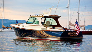 Hinckley T38 speedboat moored off Rhode Island, USA, August 2008. All non-editorial uses must be cleared individually.  -  Onne van der Wal