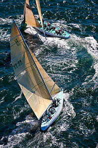 Aerial view of yachts racing during the 12 Metre North American Championships. Newport, Rhode Island, USA, September 2010. All non-editorial uses must be cleared individually.  -  Onne van der Wal