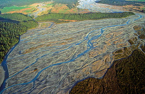 Aerial view of the braided Waiho River and part of Waiho Loop, an 11,000 year old glacial terminal moraine. West Coast, South Island, New Zealand, January 2007 - Visuals Unlimited