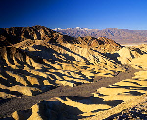 View of Zabriskie Point with Telescope Peak, 11,049 feet, in the distance in the Panamint Mountains, Mojave Desert, Death Valley National Park, California, USA.  -  Visuals Unlimited