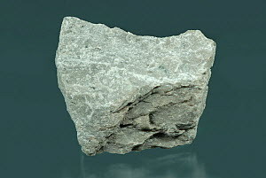Andesite is a light colored volcanic igneous rock consisting of plagioclase feldspar and hornblende, biotite or augite. - Visuals Unlimited