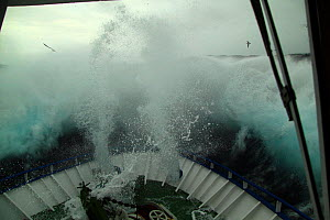 Huge wave hitting the foredeck of fishing vessel on the North Sea, Europe, April 2011. Property released. - Philip Stephen