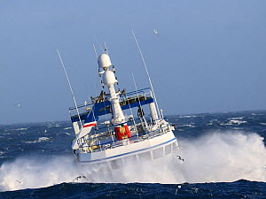 Fishing vessel in a wave trough, North Sea, Europe, March 2011. Property released. - Philip Stephen