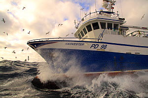 "Fishing vessel ""Harvester"" working on the North Sea, Europe, March 2011. Property released.  -  Philip Stephen"