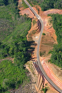 Aerial view of road construction through a primary forest. French Guiana, August 2008.  -  Daniel Heuclin