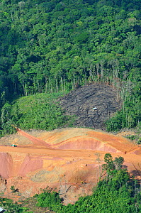 Aerial view of construction of a road in primary forest. French Guiana, 2008.  -  Daniel Heuclin