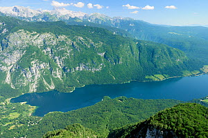 Overview of Lake Bohinj from 1535m at the top of the Vogel cable car lift, with 2864m Mount Triglav, the highest peak in the Julian Alps, in the background, Triglav National Park, Slovenia, July 2010. - Nick Upton