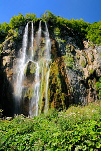 The great waterfall (Veliki Slap) tumbling 70 metres down karst limestone cliffs at Plitvice Lakes National Park, with stands of flowering Hemp agrimony (Eupatorium cannabinum) in the foreground, Croa...  -  Nick Upton