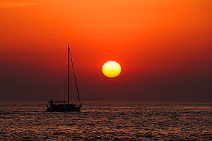 Sailing yacht silhouetted at sea off Zadar as the sun sets, with Pasman island in the far background, Croatia, July.  -  Nick Upton