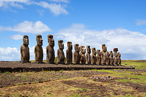 The fifteen Moai at Ahu Tongariki that stand facing the sea. Easter Island, October 2009.  -  Brent Stephenson