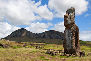 The lone Moai standing aside from the main group at Ahu Tongariki with the quarry at Rano Raraku in the background. Easter Island, October 2009.  -  Brent Stephenson
