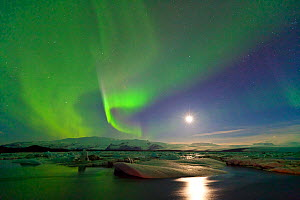 Northern lights (Aurora Borealis) and moon in sky above Jokulsarlon glacier lagoon. Southern Iceland, Europe, March 2011. - Juan Carlos Munoz
