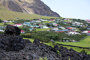 Houses in Edinburgh of the Seven Seas, the main settlement on Tristan da Cunha with solidified lava in the foreground. South Atlantic Islands, March 2007. - Troels Jacobsen/Arcticphoto