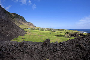 Houses in Edinburgh of the Seven Seas, the main settlement on Tristan da Cunha, surrounded by solidified lava, South Atlantic Islands, March 2007. - Troels Jacobsen/Arcticphoto