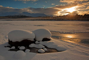 RF- Loch Morlich frozen over in winter, Cairngorms National Park, Highlands, Scotland, UK, December 2010. (This image may be licensed either as rights managed or royalty free.)  -  Peter  Cairns / 2020VISION