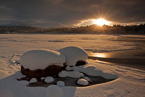 Loch Morlich frozen over with low winter sun shining through clouds, Cairngorms NP, Highlands, Scotland, UK, December 2010 - Peter Cairns / 2020VISION